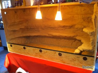 Felsr ckwand selber bauen kleine anleitung - Terrarium ruckwand selber bauen ...